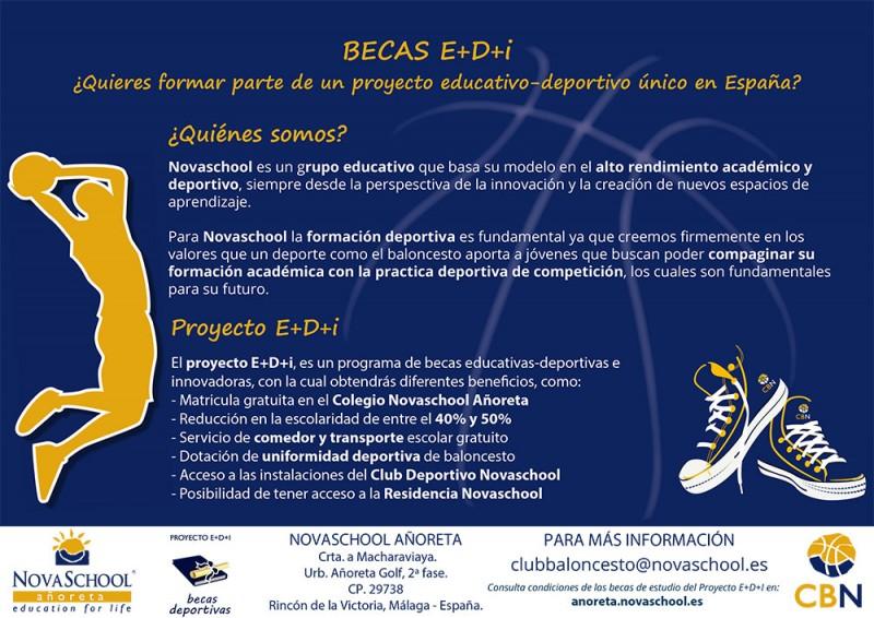 Flyer Proyecto E+D+i