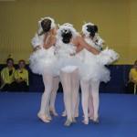 danza (13)