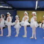 danza (14)