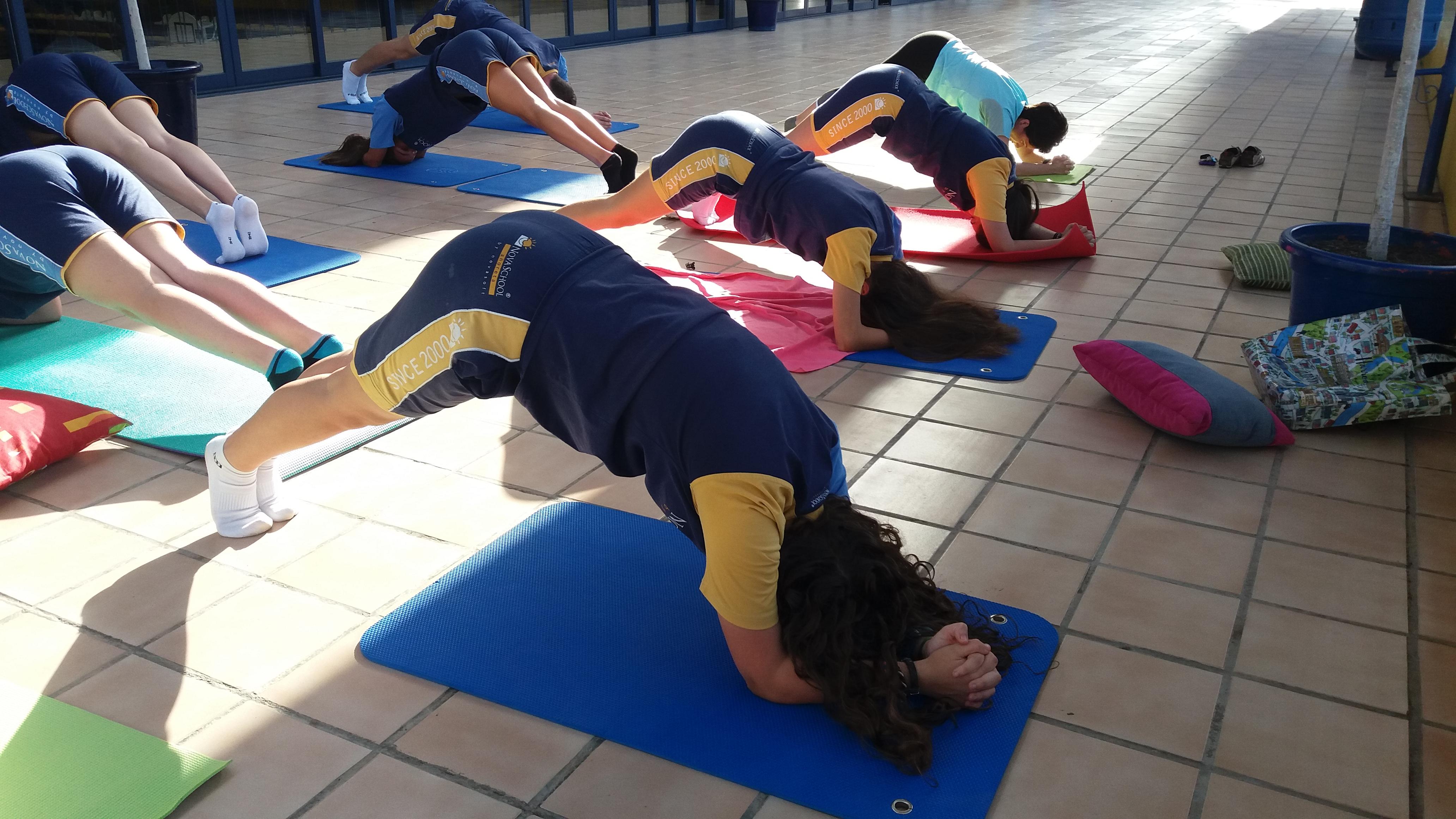 Moderno Los Estudios De Anatomía Para Profesores De Yoga Patrón ...